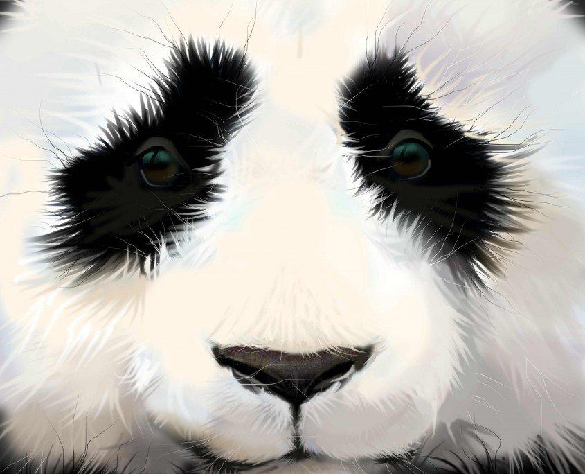 Panda Like Eyes-Dermlift PRP- Shinagawa PH