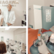 Ces Angeles for LASIK | Shinagawa Feature Story