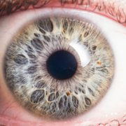 Your Cornea Is Sensitive, Make Sure You Take Care Of It | Shinagawa LASIK Blog
