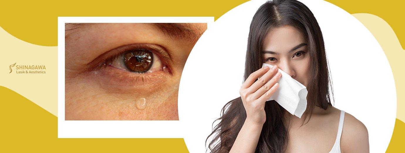 Functions Of Tears | Shinagawa Blog