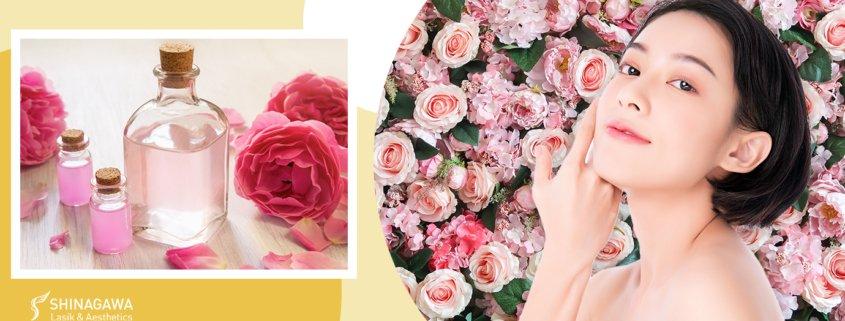 Beauty Benefits Of Rose Water | Shinagawa Blog